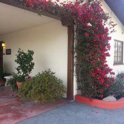 Mosdó a kertben, San Carlos, Monterey, CA