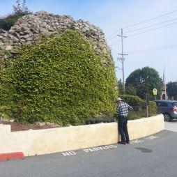 A kertész, San Carlos Katedrális, Monterey, CA