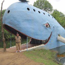 A bálnát egy helyi lakos, Hugh Davis építette a feleségének, Zeltának a 70-es évek elején, mert a feleség gyűjtötte a bálnafigurákat. Idővel kedvelt szabadidős hellyé vált a tóparti bálna.