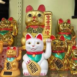 A szerencsét hozó, óva intő és védelmező kultikus macska