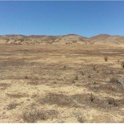 Mojave, NV